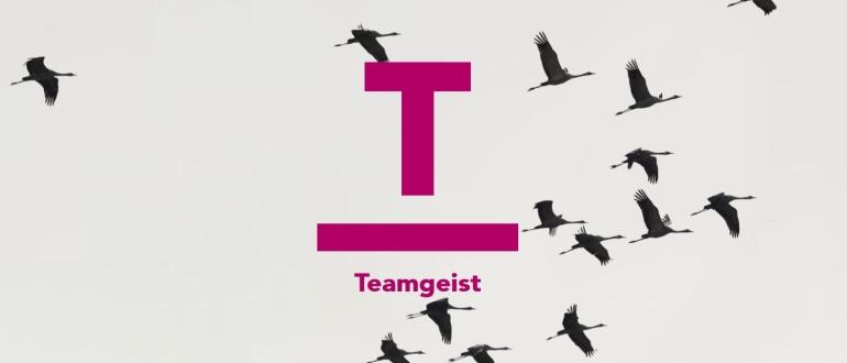 RIT-Blog-Karriere-Teamgeist