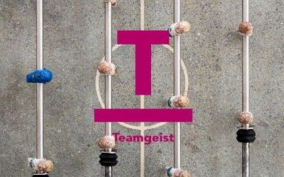 rit-blog-Teamgeist