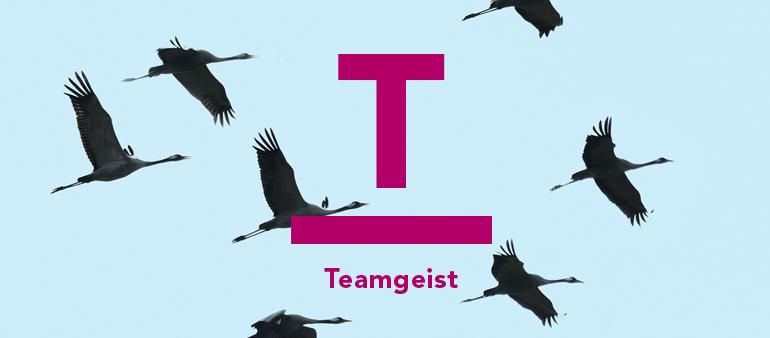RIT-Blog-Teamgeist-1